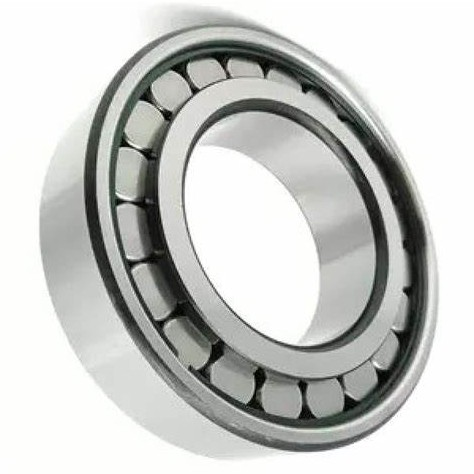 CG STAR NU 206 ECJ cylindrical roller bearing Motorcycle bearing