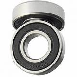 Ceramic Stainless Steel Ball and Roller Bearing Ss608 Ss609 Ss625 Ss626 Ss688 Ss695 Ss6301 Ss6302 (SS51110 SS51105 SS51108 SS51210 SS51212 SS51106)