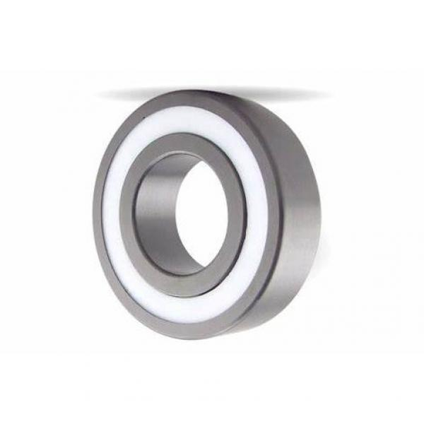 Ceramic Stainless Steel Ball and Roller Bearing Ss608 Ss609 Ss625 Ss626 Ss688 Ss695 Ss6301 Ss6302 (SS51110 SS51105 SS51108 SS51210 SS51212 SS51209) #1 image